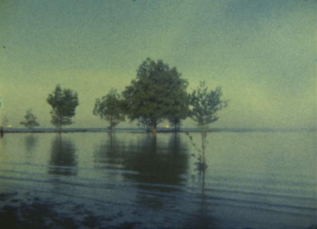 untitled (2004) by Simryn Gill