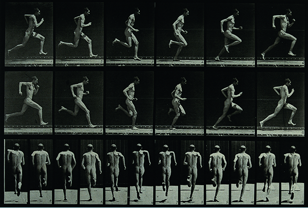Eadweard Muybridge, A Man Sprinting, 1887, photogravure after collotype, 23.5 x 31.5 cm (9 1/4 x 12 1/2 in), Wellcome Library, London. As reproduced in Body of Art